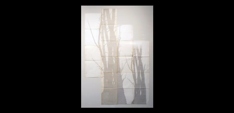 Obra de Johanna Calle, que a Marilia Razuk leva à Arco
